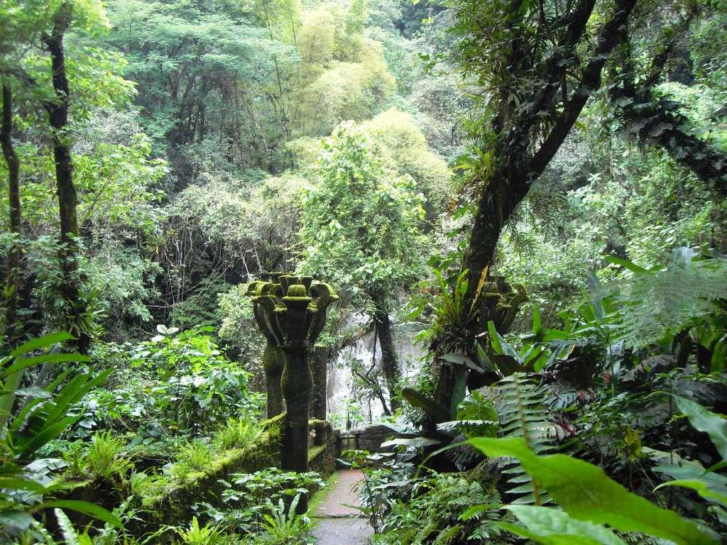 Die verzauberten Gärten des Sir Edward James, Xilitla