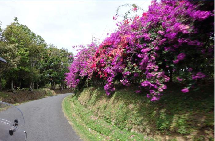 Panama 10 Richtung Vulkan