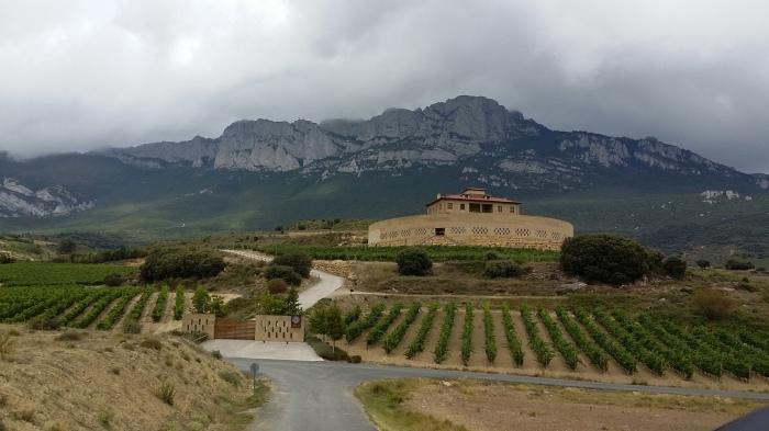 Weinanbau Rioja Gebiet