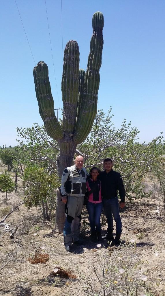 das musste noch sein - ein Bild vom Kaktus - gibt es ja so wenige hier